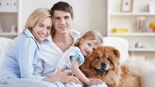 Wills & Trusts dog-young-family Direct Wills Gloucestershire